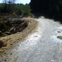 A5 dog walk near Betws-y-Coed, Clwyd, Wales - Dog walks in Wales