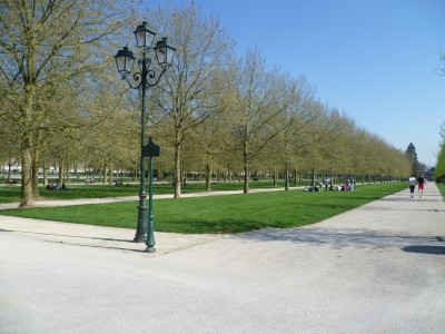 A26 exit 10 St Quentin dog walking park, France - Driving with Dogs
