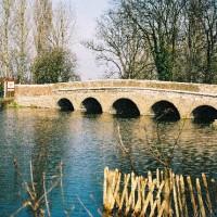 Five Arches dog walk, Kent - Dog walks in Kent