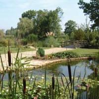 Water gardens of Moulin des Vernes - dog-friendly, France - Image 2