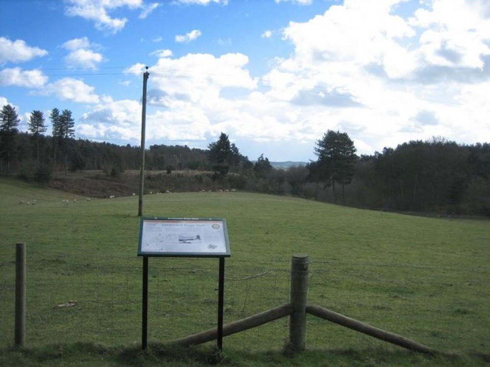 Maulden Woods dog walk, Bedfordshire - Dog walks in Bedfordshire