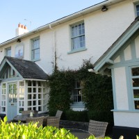 A35 dog-friendly pub near Poole, Dorset - IMG_0266.JPG
