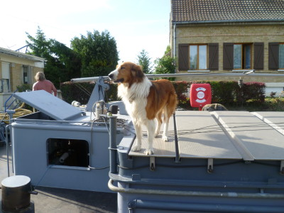 A26 exit 14 Aisnes canal dog walk, France - Driving with Dogs
