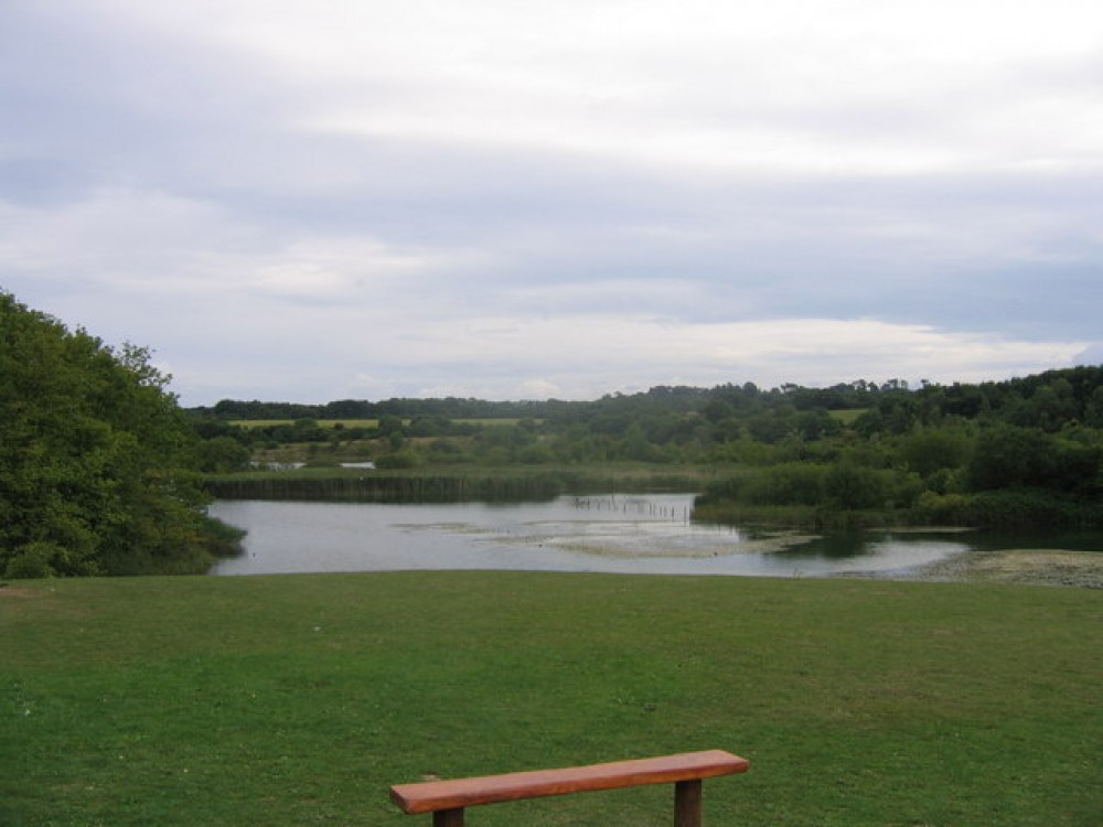 Cosmeston Country Park dog walk, Wales - Dog walks in Wales