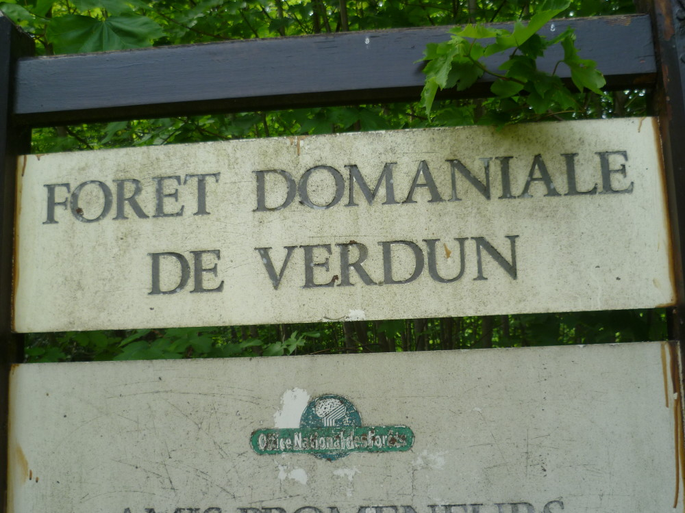 Verdun area dog walk, France - Image 5