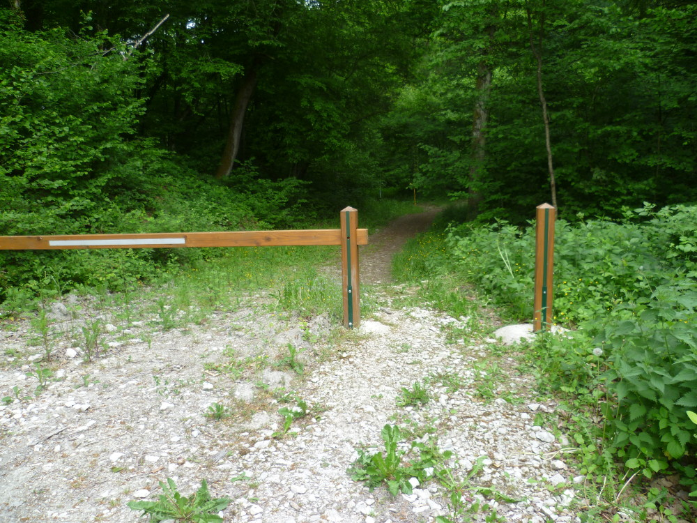 A4 Exit 29 Forest Dog Walk, France - Image 2