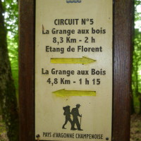 A4 Exit 29 Forest Dog Walk, France - Image 6
