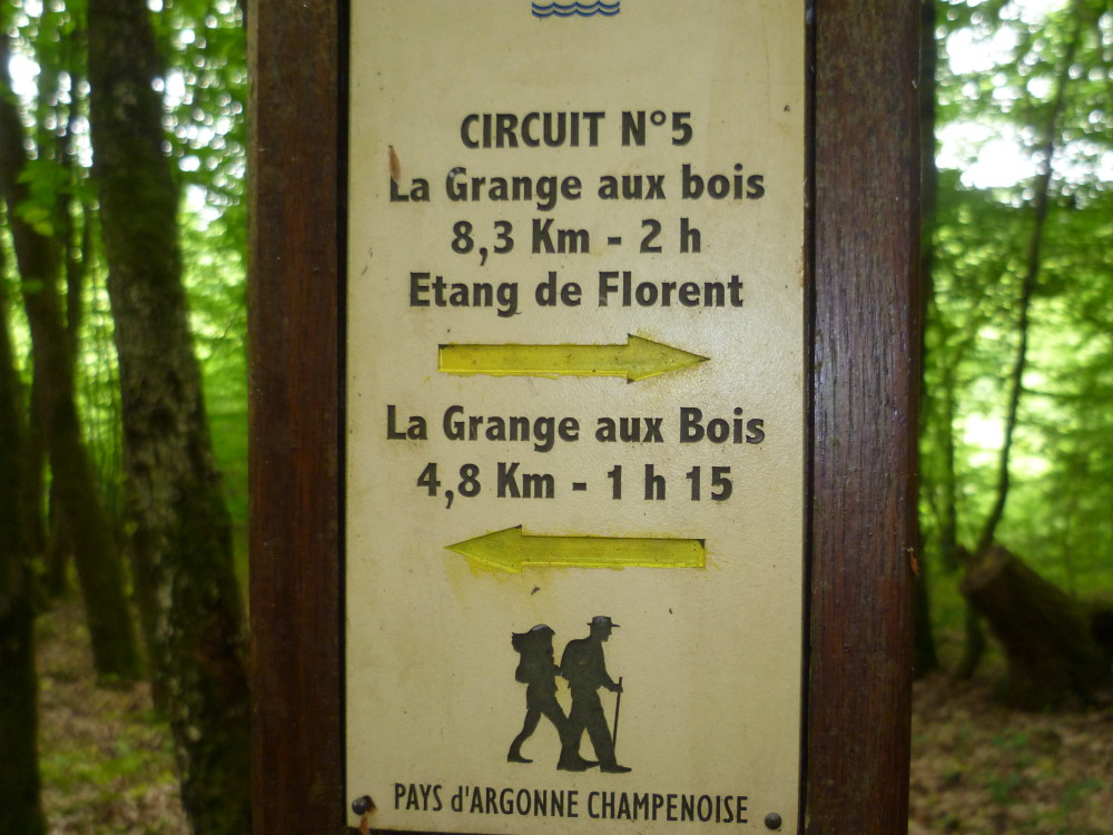 A4 Exit 29 Forest Dog Walk, France - Image 6