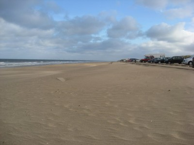 Huttoft car terrace dog friendly beach, Lincolnshire - Driving with Dogs
