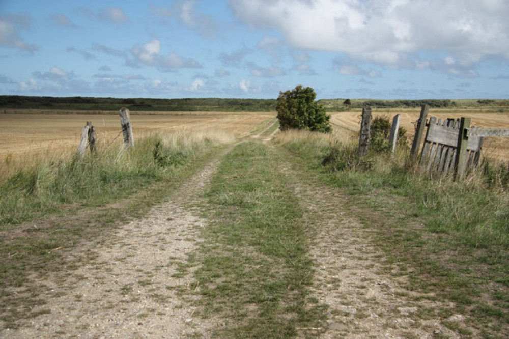 Huttoft car terrace dog friendly beach, Lincolnshire - Dog walks in Lincolnshire
