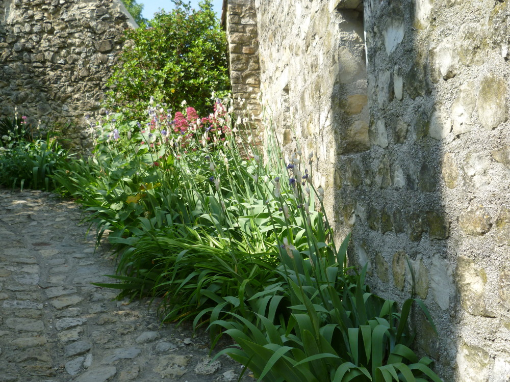 A7 exit 17 village doggiestop near Mirmande, France - Image 3