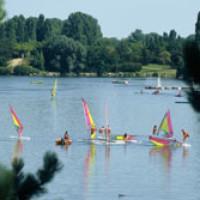 Lake Kir dog swimming, Dijon, France - Image 3