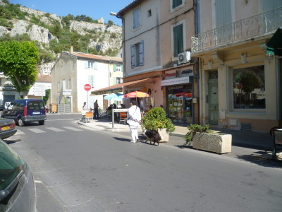 A7 exit 25 doggiestop in Cavaillon, France - Driving with Dogs