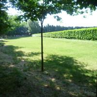 A7 exit 25 doggiestop in Cavaillon, France - Image 3