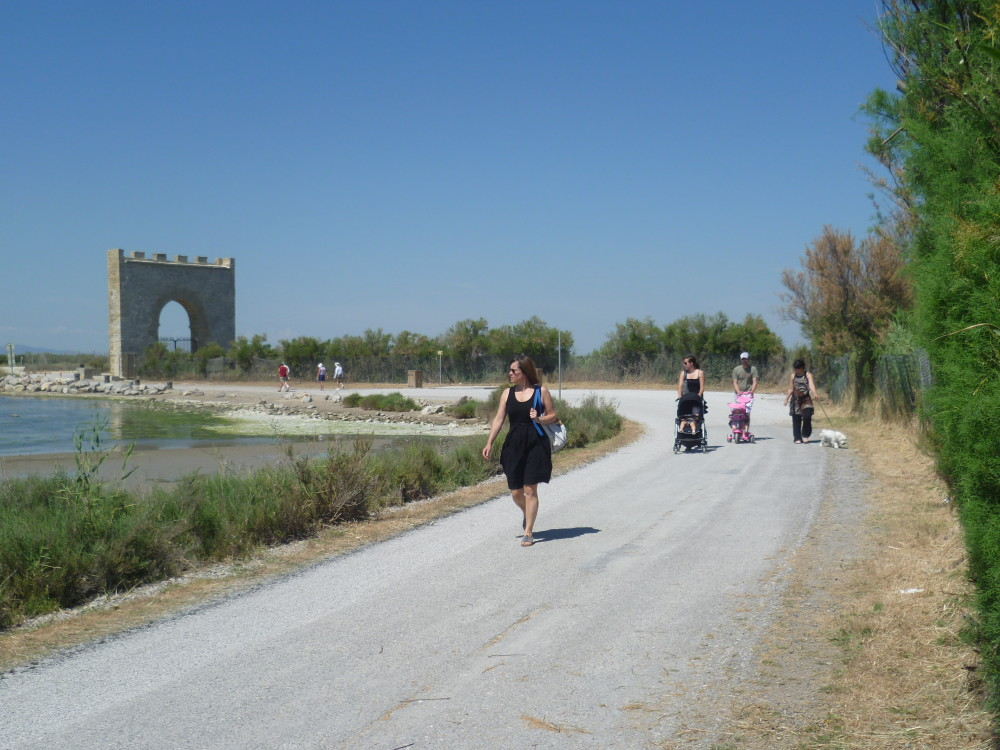 A9 Exit 32 doggiestop at Villeneuve-les-Maguelones, France - Image 4