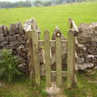 Tissington dog walk, Derbyshire - Image 11