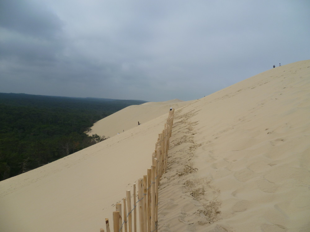 Atlantic dunes dog-friendly beach and walk, France - Image 1