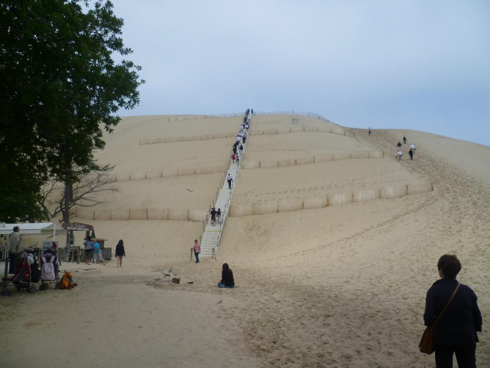 Atlantic dunes dog-friendly beach and walk, France - Image 2