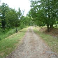 A62 Exit 9 St Nicolas-de-la-Grave dog walk, France - Image 2