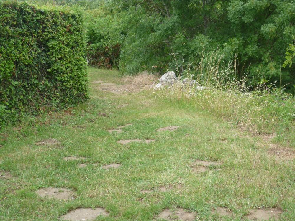 A62 Exit 9 St Nicolas-de-la-Grave dog walk, France - Image 3