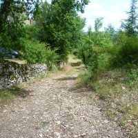 A20 exit 57 dog walk at the old Chateau, France - Image 2