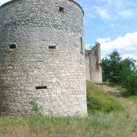 A20 exit 57 dog walk at the old Chateau, France - Image 4
