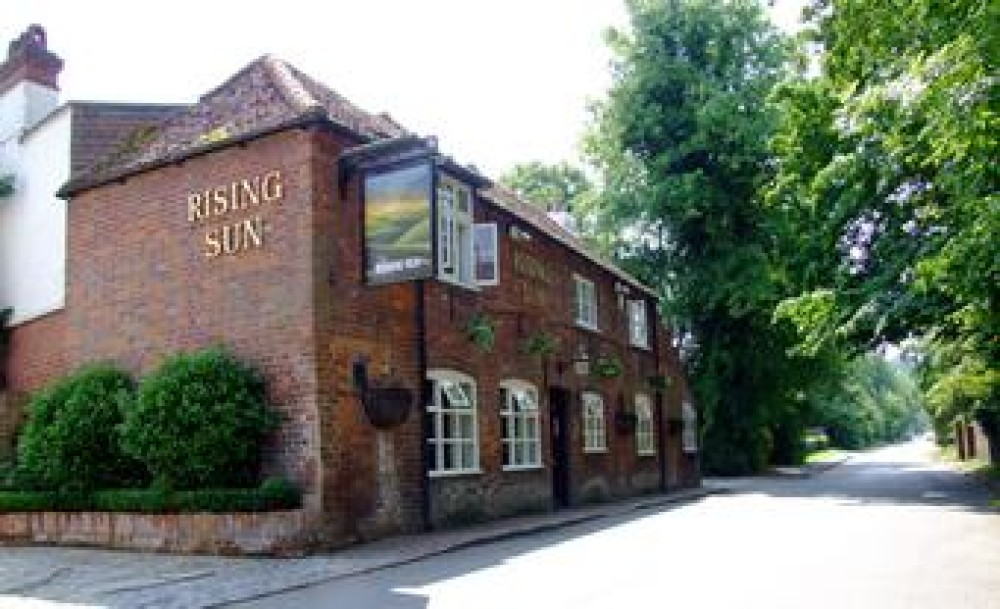 Hurley dog walk and dog-friendly pub, Berkshire - Dog walks in Berkshire