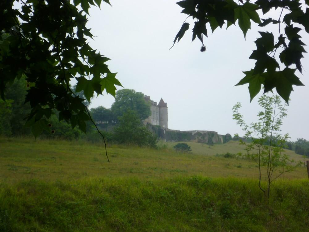 A89 exit 13 dog walk near Mussidan, France - Image 2