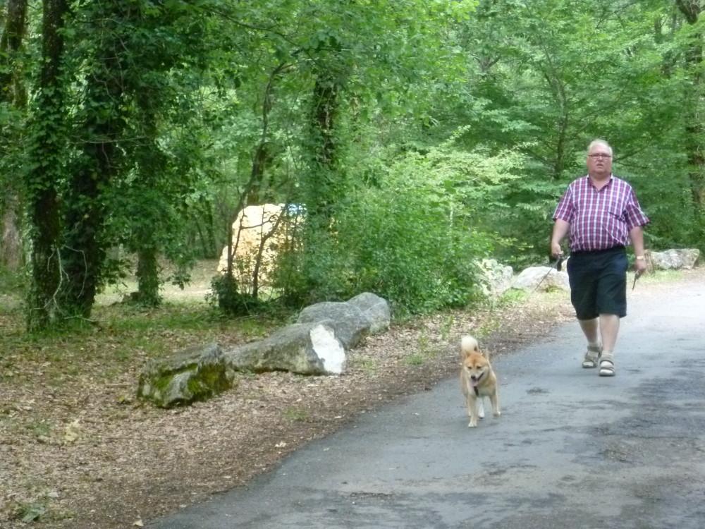 A89 Exit 17 dog-friendly Lascaux caves, France - Image 3