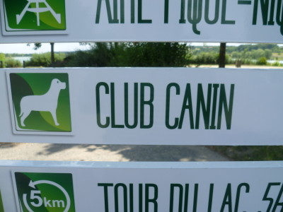 A10 Exit 27 Base de St Cyr doggiestop, France - Driving with Dogs