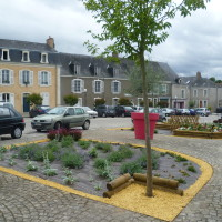 A11 exit 10 doggiestop near Malicorne, France - Image 7