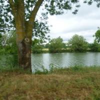 A11 exit 13 Loir riverside doggiestop, France - Image 2