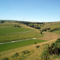 Castle Hill National Nature Reserve dog walk, East Sussex - Dog walks in Sussex