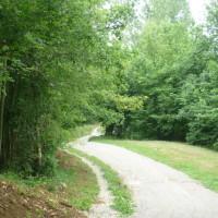 A20 exit 52, Lissac sur Couze dog walk, France - Image 3