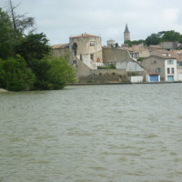 A61 exit 21 Castelnaudary dog walk, France - Image 4