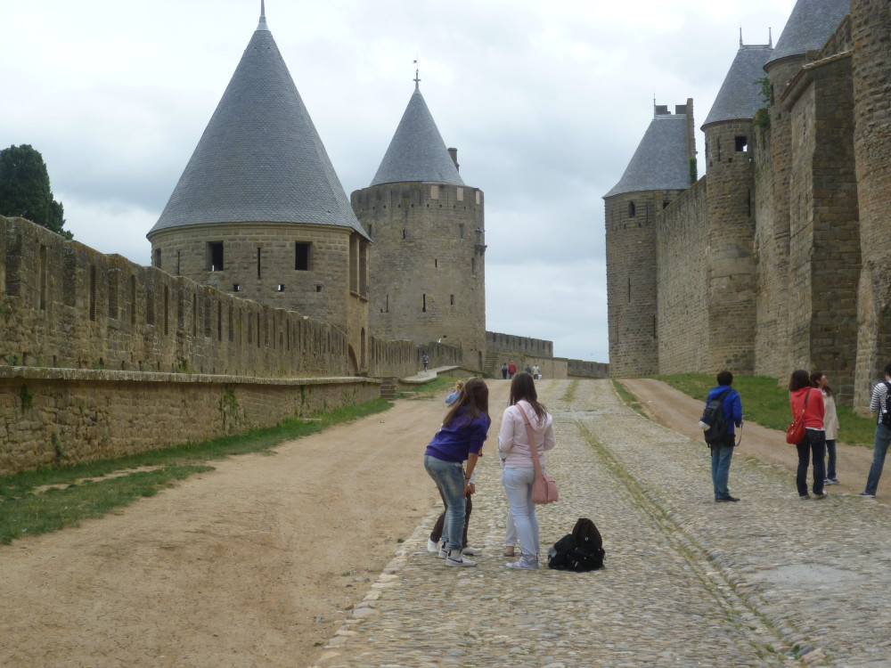 A61 exit 24 a dog walk in The Citadel, France - Image 1