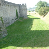 A61 exit 24 a dog walk in The Citadel, France - Image 6