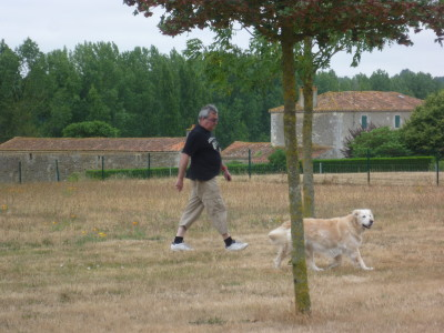 A83/6-7 Aire de la Vendée, France - Driving with Dogs