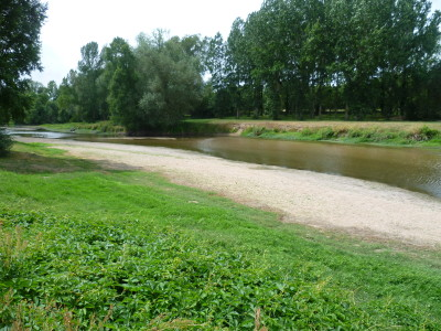 A87 exit 24 Loire valley dog walk, France - Driving with Dogs