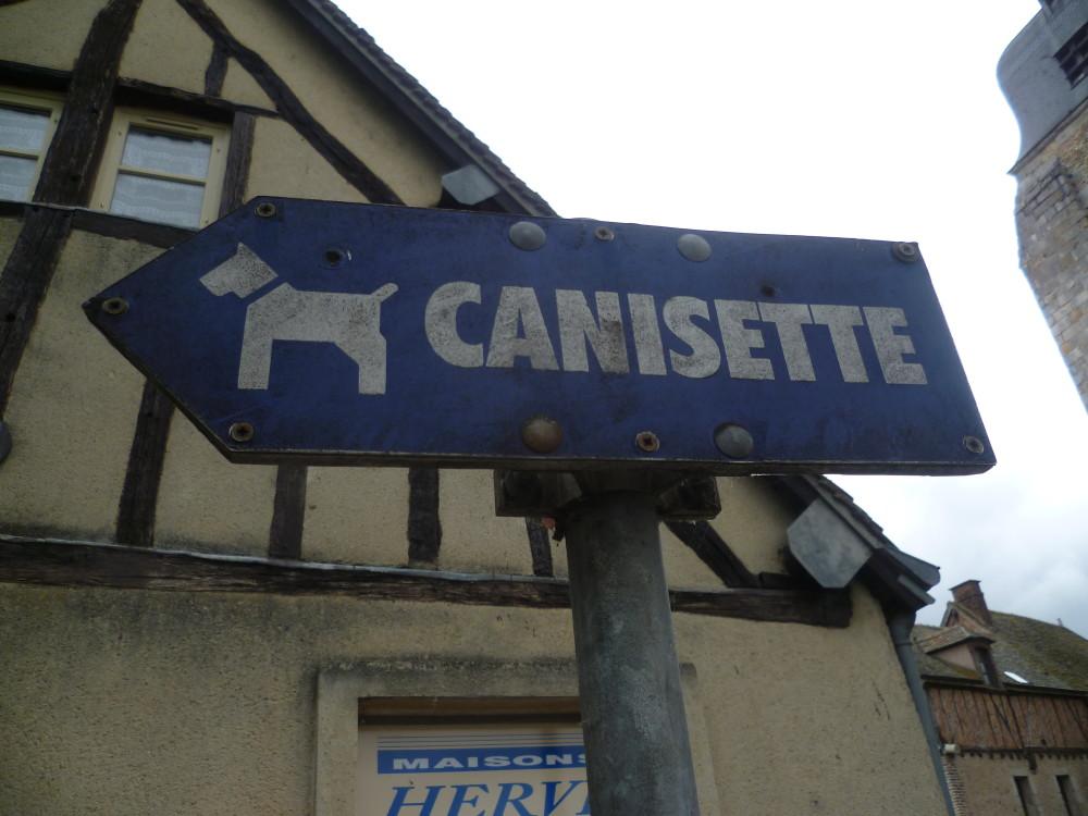 Nogent-le-Roi dog walk and driving break, France - Image 2