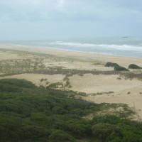 Pointe de la Coubre dog-friendly beach, France - Image 4