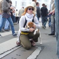 La Rochelle dog walk, France - Image 1
