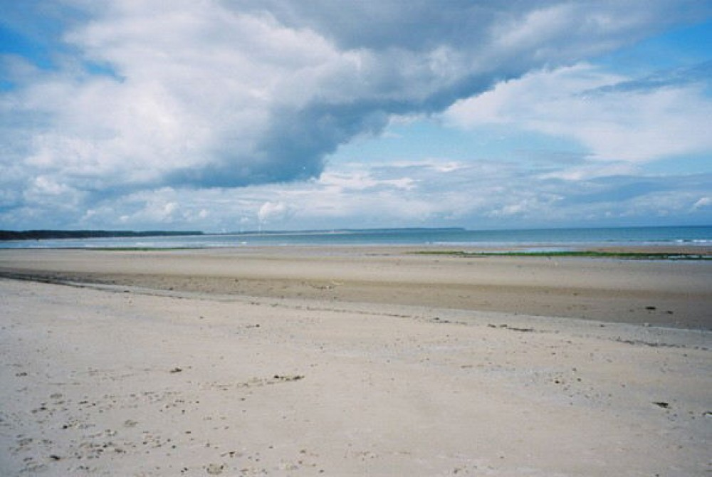 A96 dog-friendly beach and dog walk near Findhorn, Scotland - Dog walks in Scotland