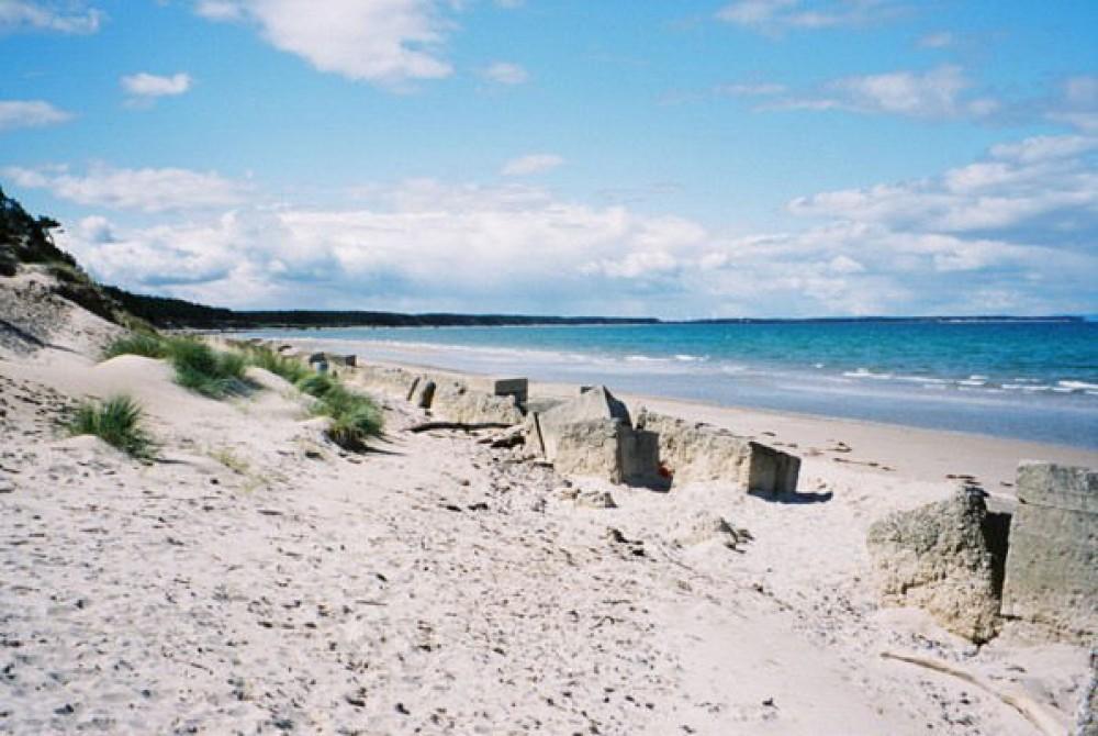 A96 dog-friendly beach and dog walk near Findhorn, Scotland - Dog walks in Scotland