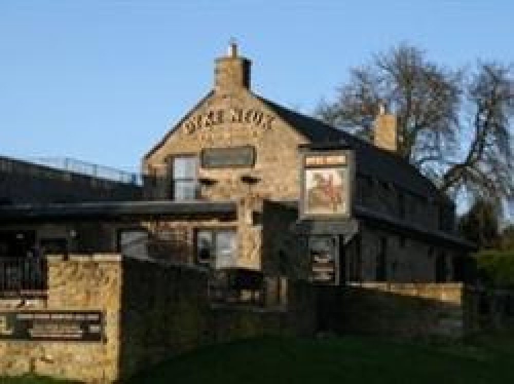 Morpeth dog-friendly pub, Northumberland - Dog walks in Northumberland