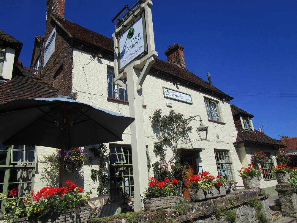 M40 Chilterns dog walk and dog-friendly pub, Oxfordshire - Chilterns dog walk with dog-friendly pub