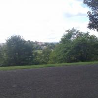 M8 junction 24 dog walk in a Glasgow park, Scotland - Dog walks in Scotland