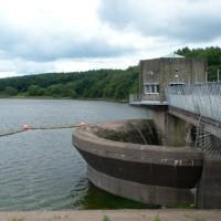 Tittesworth reservoir dog walk, Staffordshire - P1150911.JPG