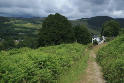 A82 dog-friendly pub and dog walk near Loch Ness, Scotland - Driving with Dogs