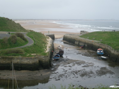 Seaton Sluice dog-friendly beach, Tyne and Wear - Driving with Dogs